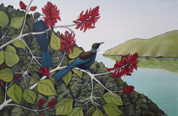 Tui in the Flame Tree II